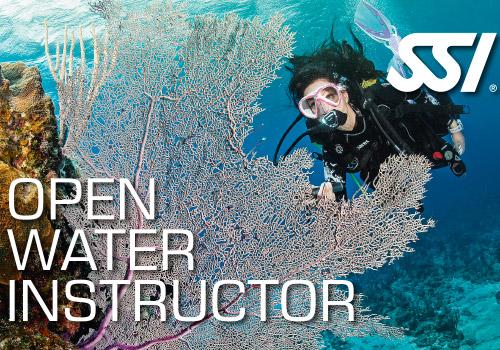 formation-plongee-open-water-diver-argonaute-toulouse.jpg