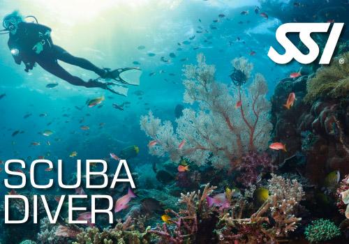 formation-plongee-scuba-diver-argonaute-toulouse