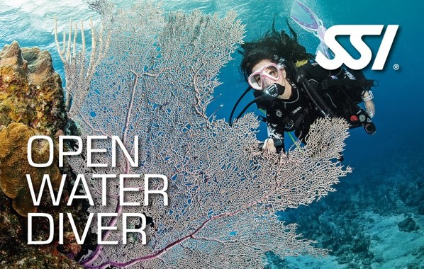 formation-open-water-diver