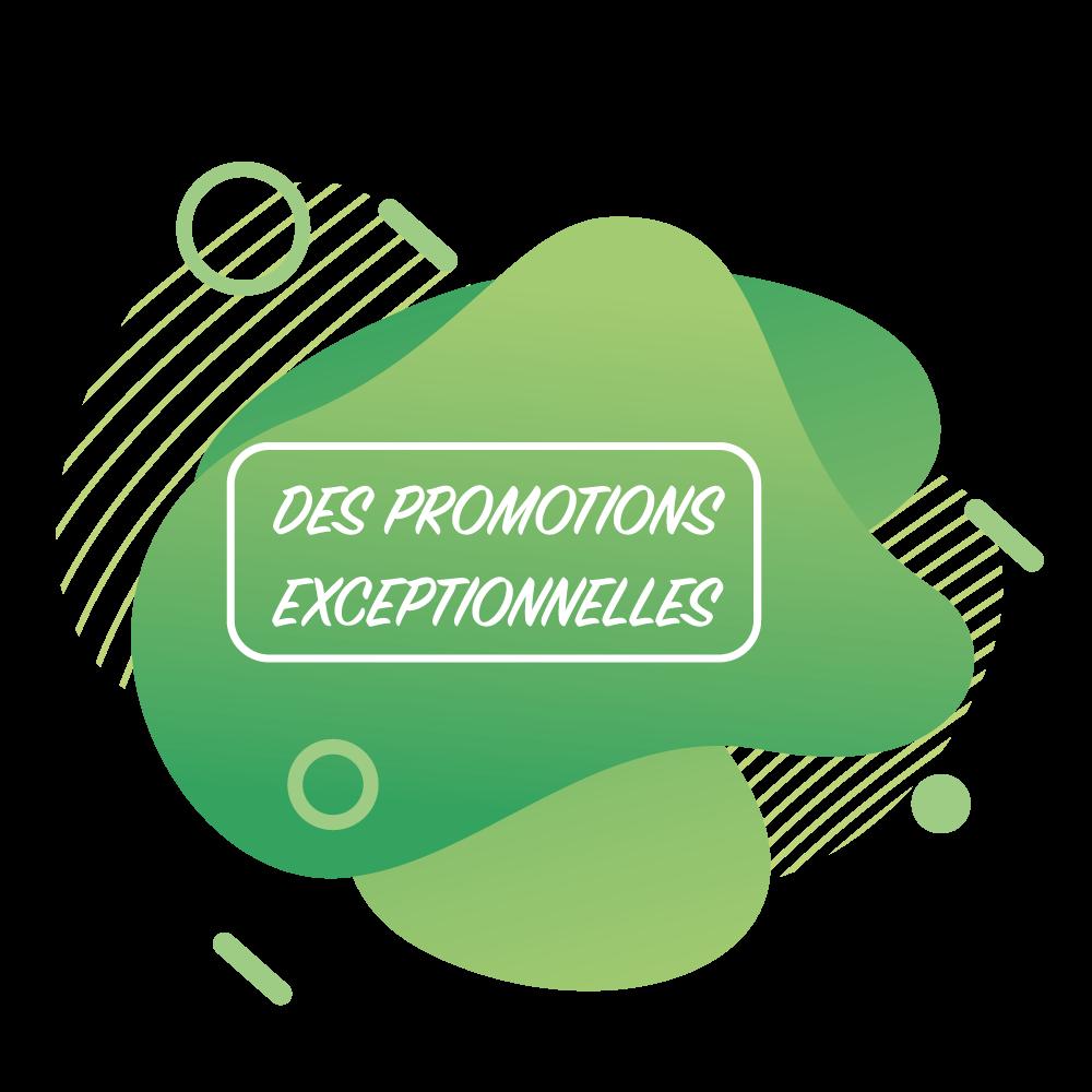 """Promotions exceptionelles durant le """"Printemps des marques"""""""